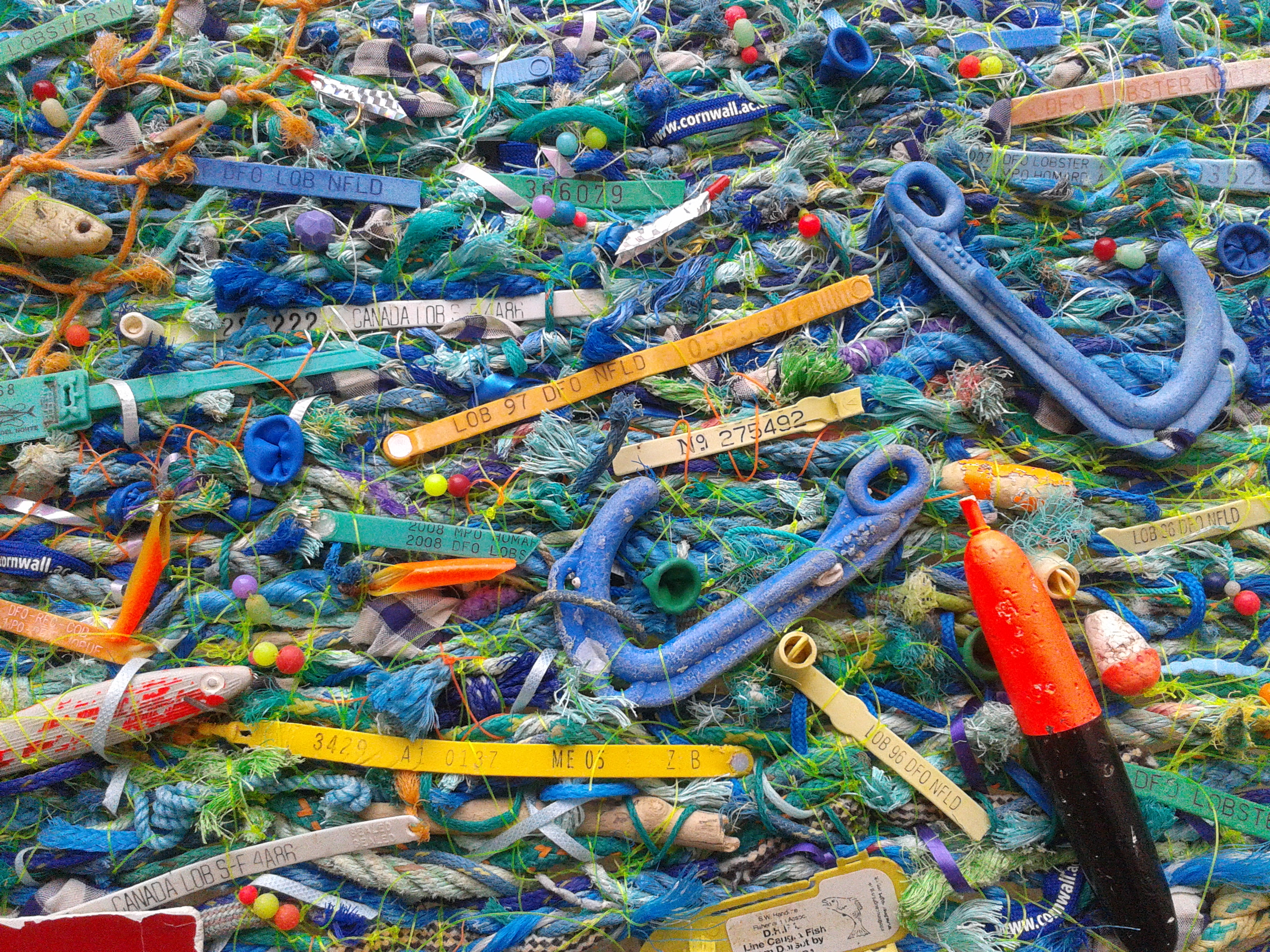 Gallery flotsam weaving for More fish in the sea