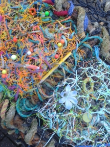Stranded - weaving into a found lobster pot