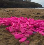Indie Kitchen help collect the Vanish pink bottles from Cornish beaches