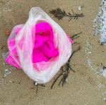 Volunteers clean pink bottles from beaches in Cornwall. Image with thanks to www.oceanpositive.net